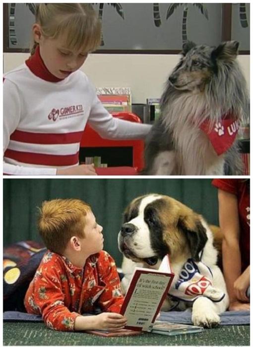 собаки допомагають навчитися читати